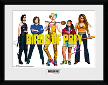 Birds Of Prey - Group - Inramad bild - multicolor