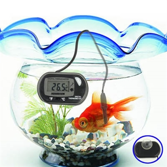 LCD lämpömittari akvaarioon
