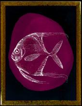 Tavla grön fisk - Svart ram