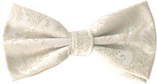 Knuten fluga Paisley Ivory