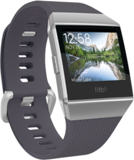 Ionic Blue-Gray/Silver-Gray