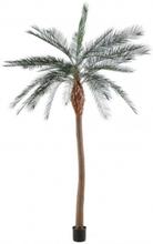 Stor kunstig Phoenix palmetræ H340 cm