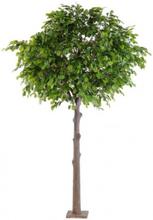 Stort kunstigt egetræ H300 cm
