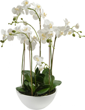 Emerald Konstväxt orkidé vit 80 cm 20.335C