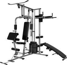 vidaXL multifunktionelt hjemmemotionsudstyr 65 kg