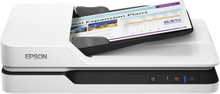 Scanner Epson B11B239401 LED 300 dpi LAN