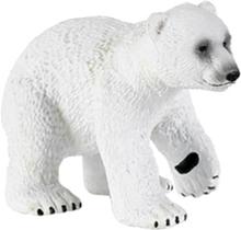 Isbjörns unge