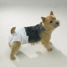 Clean go Pet Blöja till Hund - 10 Pack