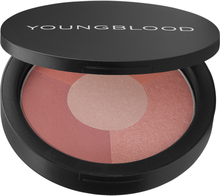 Osta Youngblood Mineral Radiance, 9,5g Youngblood Highlighterit edullisesti