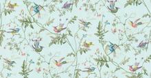 Hummingbirds - 100/14069