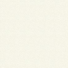 Apilainen kangas Beige-valkoinen