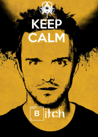 """Jesse Pinkman from the TV series """"Breaking Bad"""""""