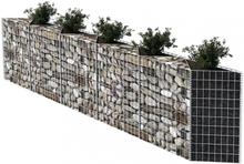 Gabionkurv/plantekasse/hevet grønnsaksbed - 300x30x100 cm