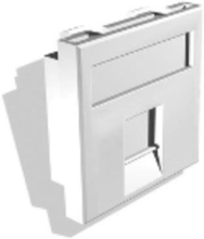 Single snap-in-jack faceplate module with dust covers for 2
