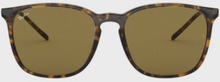 Ray Ban 0RB4387 Solglasögon Havana