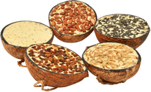 vidaXL Fuglemat i halve kokosnøtter 10 stk 290 g