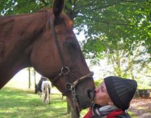 Pferdeherzen gewinnen