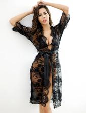 Sheer Transparent Lace Dress