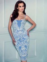 Lace Print Bodycon Dresss