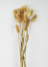Bunnytails, Natur 15-pack