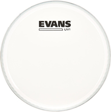 "Evans 08"""" UV1 Coated Tom"