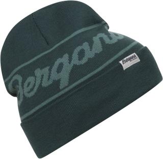 Bergans Bergans Logo Beanie Dame luer Grønn OneSize