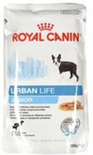 Royal Canin - Urban Life Junior karma dla szczeniąt 10-15 miesią...
