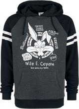 Looney Tunes - Wile E. Coyote -Hettegenser - gråmelert, svart