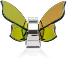 Schmetterling mit Spiegel-Effekt