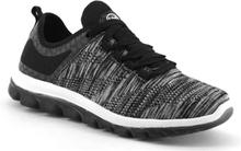 Scholl Darwin Sneakers Dark Grey