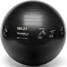 Sklz TrainerBall Sport Performance Gymball 65 cm (med ABS & Pump)