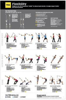 TRX All Body Flexibillity Plakat 58 x 86cm
