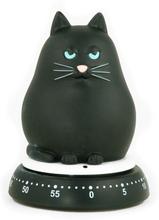 Katt timer svart