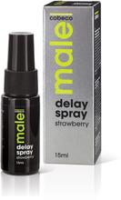 Male - Delay Spray Strawberry 15 ml
