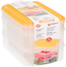 Alpina Food Storage Box / Container Yellow - 4 Parts