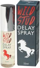Spray Znieczulający Penisa Wild Stud Extra Strong 22ml | 100% DYSKRECJI | BEZPIECZNE ZAKUPY
