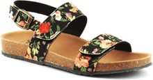 Scholl Damsandal Greeny Black Multi