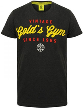 Gold's Gym Vintage Printed T-shirt, Charcoal Marl