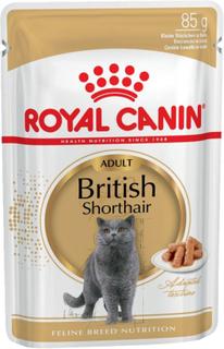 Royal Canin British Shorthair i sauce - 24 x 85 g