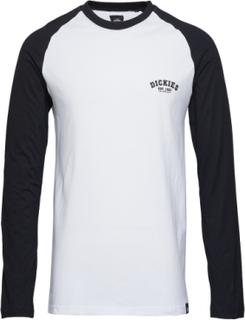 Dickies Baseball T-Langærmet Skjorte Hvid Dickies