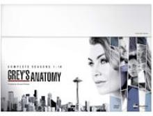 Grey's Anatomy S1-14 Boxset