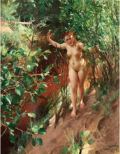 Steve Art Gallery Red sand,Anders Zorn,50x40cm