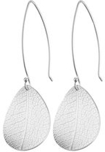 Leaf small earrings