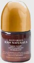 Raw Naturals Goof Proof Antiperspirant Deodorant Grå