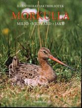 Morkulla - Miljö - Viltvård - Jakt