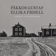 Päkkos Gustaf/Ellika Frisell: Evening at... 1988