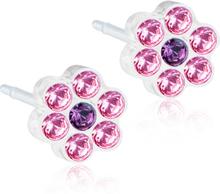 Blomdahl Daisy 5mm Light Rose/Amethyst Örhängen Medicinsk plast