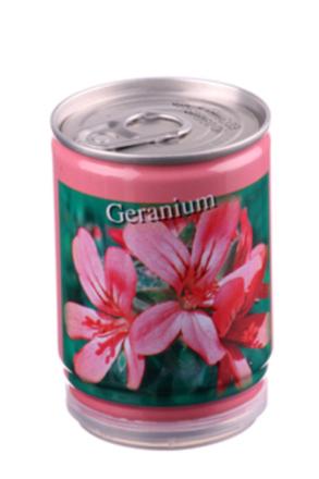 Konservväxter Geranium