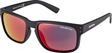 Alpina Kosmic Cykelbriller, black matt 2020 Briller