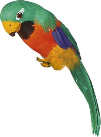 Exotisk grön papegoja One-size